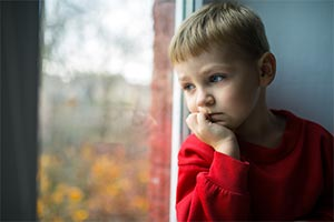 bereavement training with schools - boy looking out of window